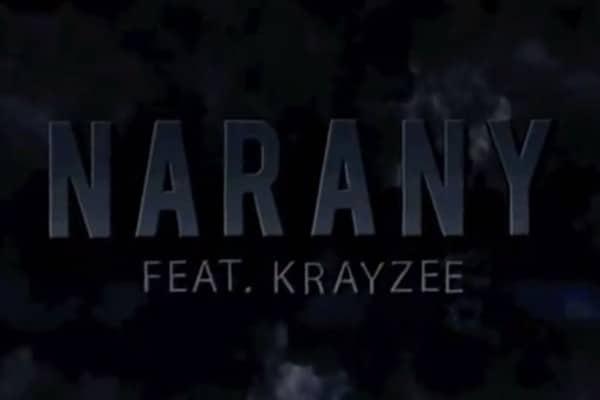 Narany feat. Krayzee – The storm portfolio Portfolio thestorm 600x400